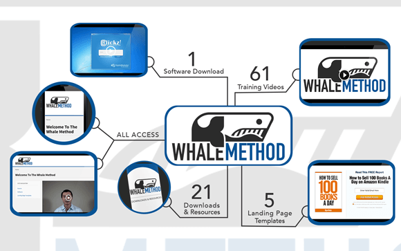 Whales forex services