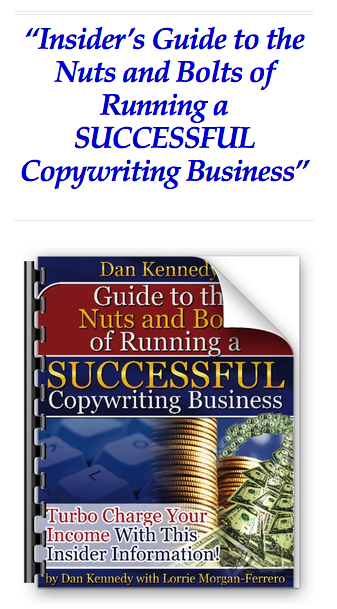 Insider's Guide to the Nuts and Bolts of Running a SUCCESSFUL Copywriting Business download