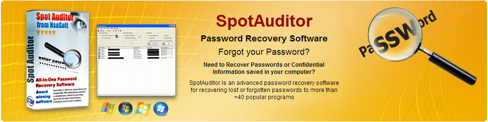 SpotAuditor Password Recovery Software download
