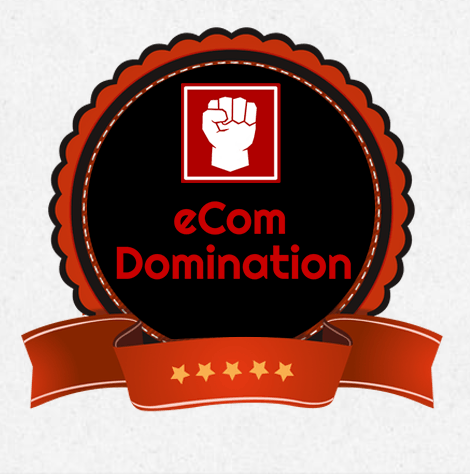 eCom Domination 2017 – Jon Bowtell and Sam England download