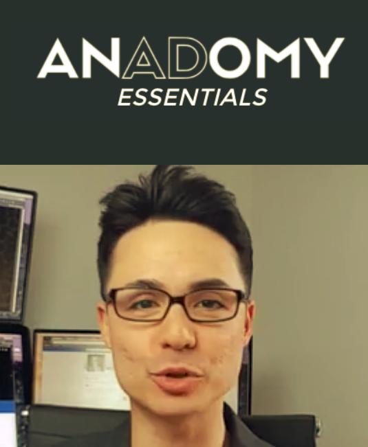 Anadomy Essentials – Nicholas Kusmich download