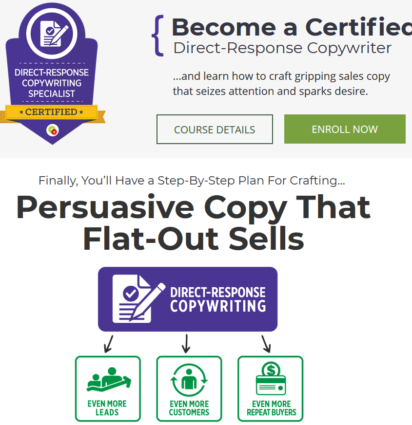 Direct-Response Copywriting Mastery Course – Pam Foster download