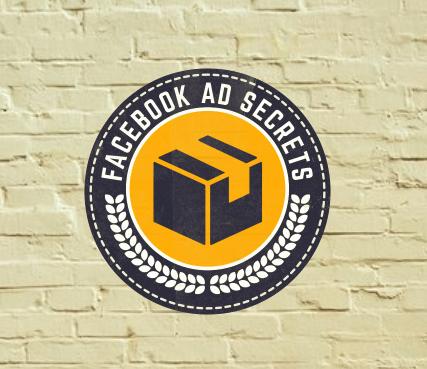 Facebook Ad Secrets – Douglas James download