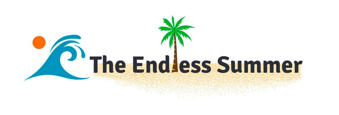 The Endless Summer Google Shopping Course – Sharad Thaper download