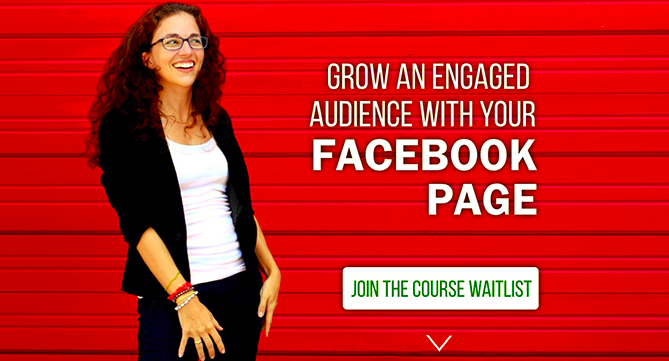 Facebook Page Strategies X-Course – Moolah download