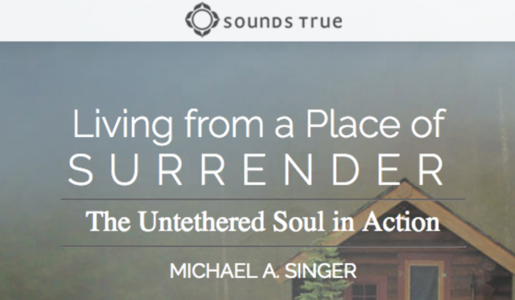 Living From a Place of Surrender – Michael Singer download