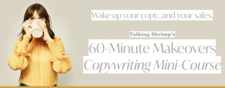 60-Minute Makeovers Copywriting Mini-Course – Laura Belgray download